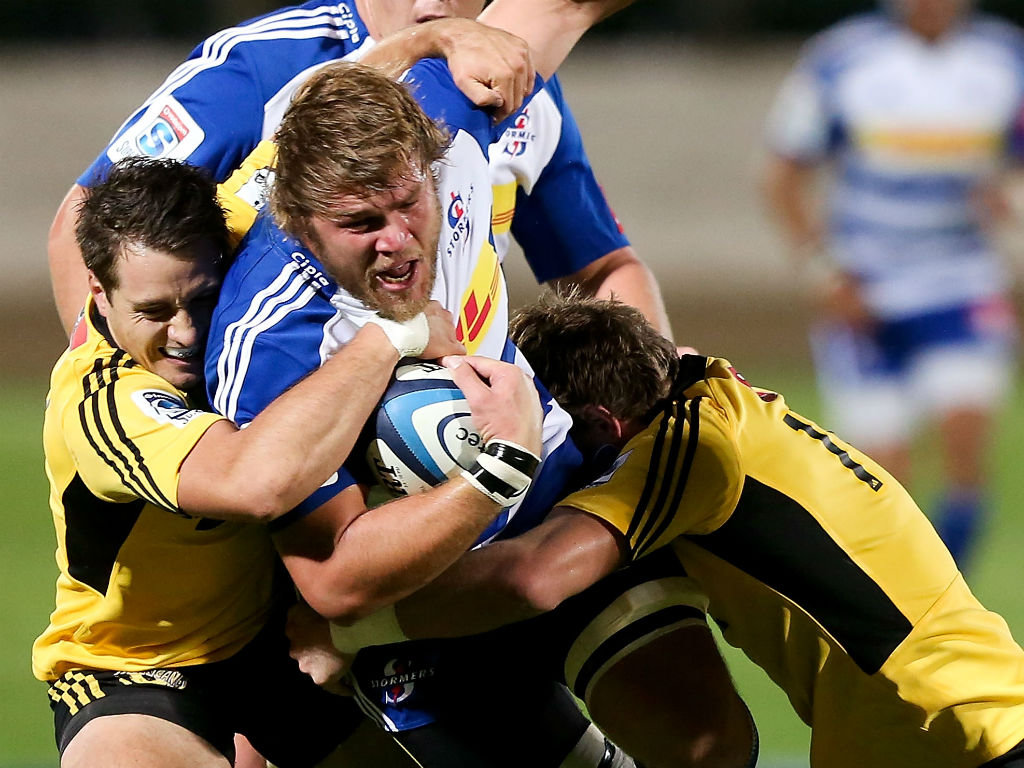 Stormers v hurricanes betting preview betus sports betting reviews