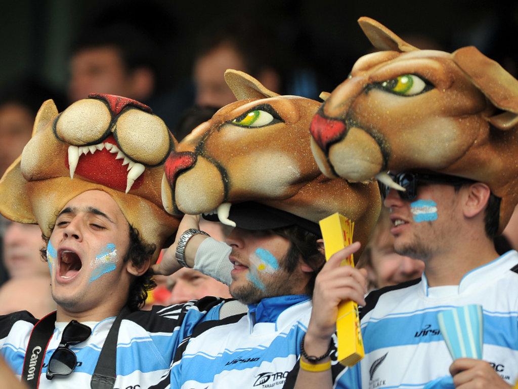 Pumas fans: Nifty headgear