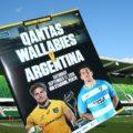 Gallery: Australia 36 Argentina 20