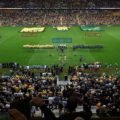 Gallery: Australia 23 South Africa 17